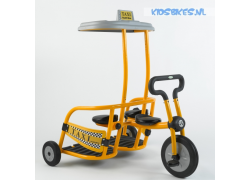 Italtrike Professioneel Pilot 300 Driewieler Taxi 1+2 Active
